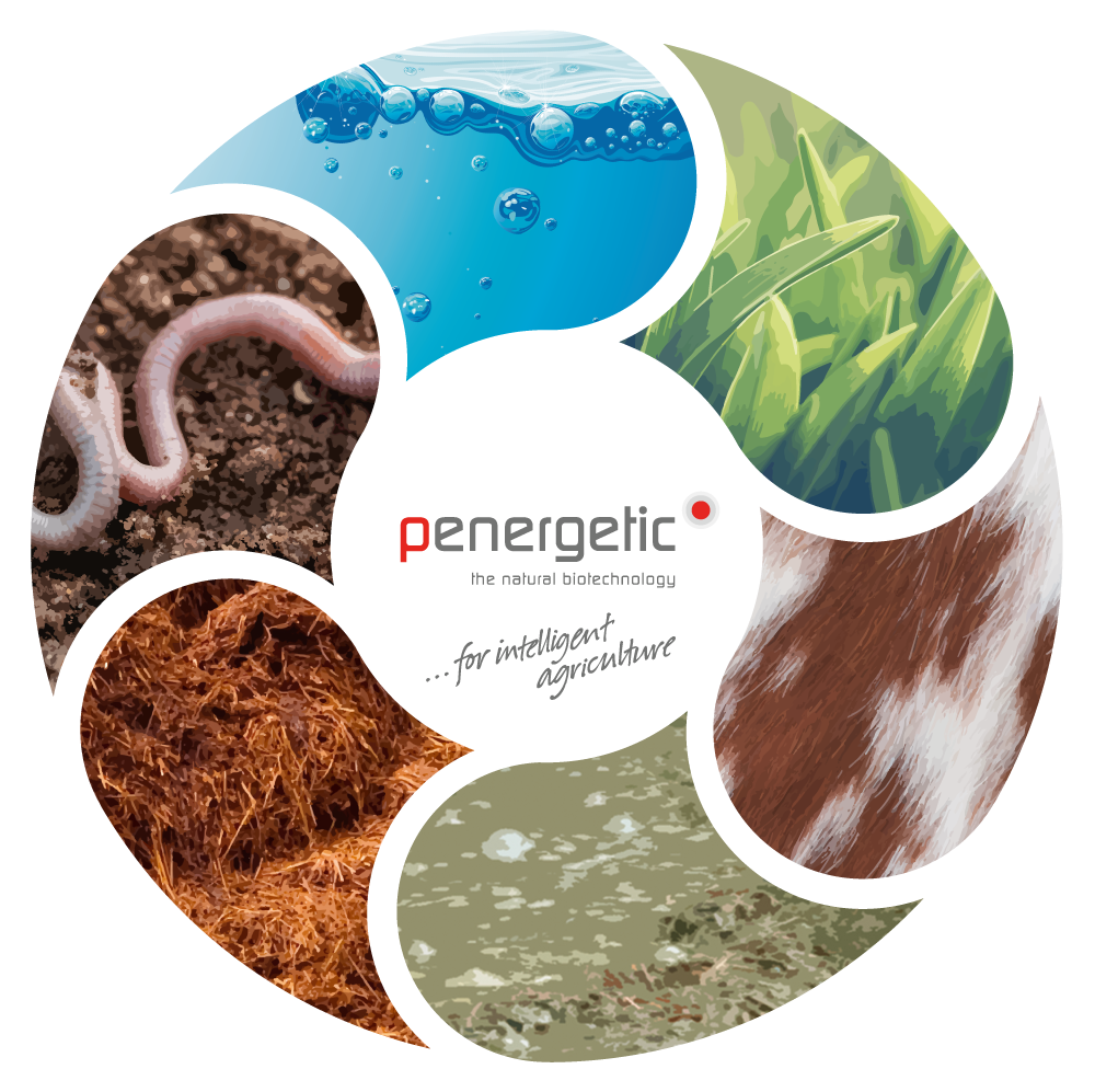 Penergetic products for intelligent agriculture